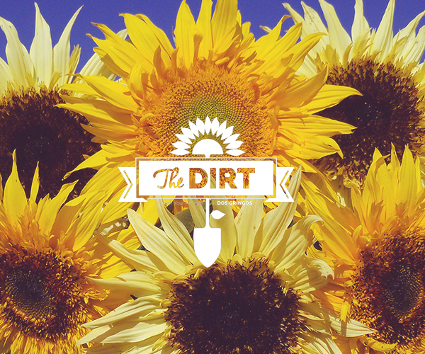 The Dirt - Flowers Make You Happy (True Story)