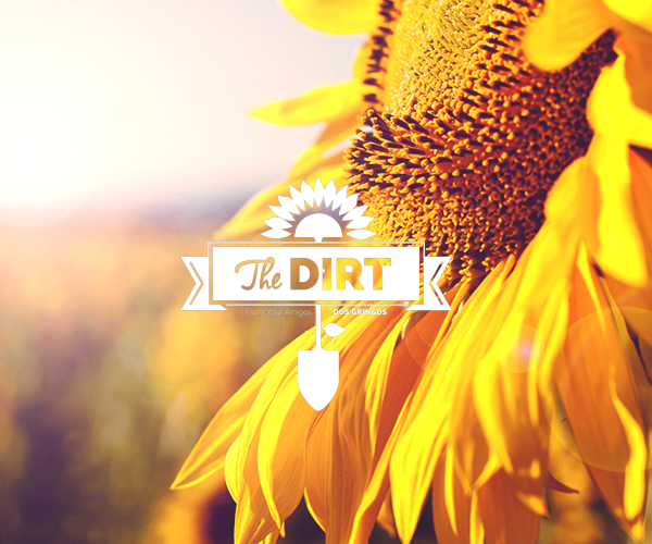 The Dirt - Winter 2015