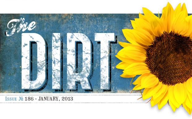 The Dirt - January 2013