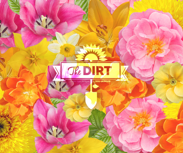 The Dirt - Ahhh…….Moms!