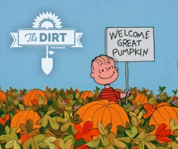 The Dirt - Charlie Brown would be pleased!
