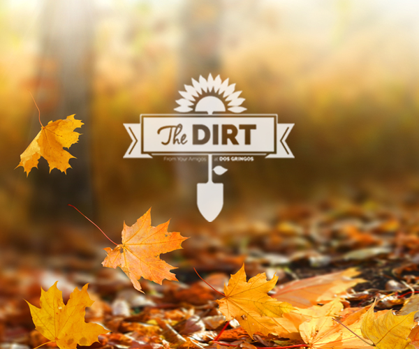 The Dirt - Autumn Is Like A Second Spring, When Every Leaf Is Like A Flower.