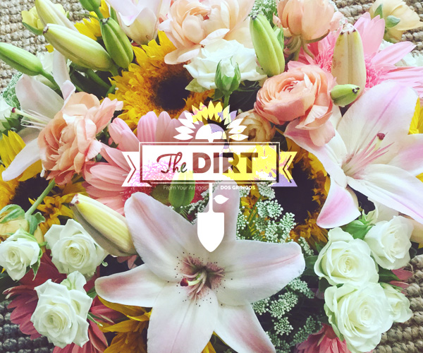 The Dirt - Brand New for Spring 2018